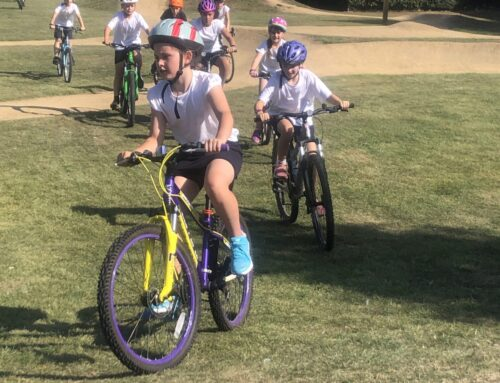 Year 5 Cycling in the Sunshine!